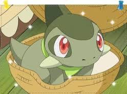 Pension Dragon