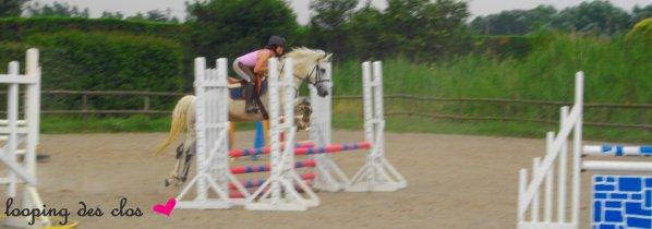 _  « On a vu des chevaux et des cavaliers daccord : c'étaient souvent des chevaux de bois. »  _  Robert Dieudonné ♥