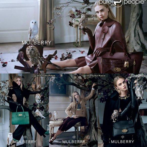 Cara Delevingne pour la campagne Automne/Hiver 2013-2014 de Mulberry