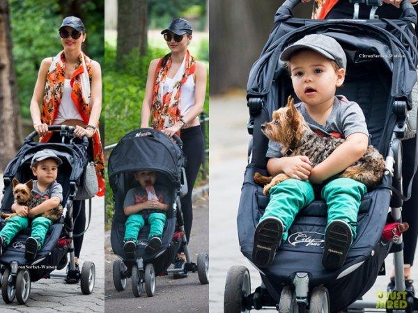 Le 26.07.13 : Miranda se baladait à Central-Park avec son fils Flynn et leur chien Frankie...