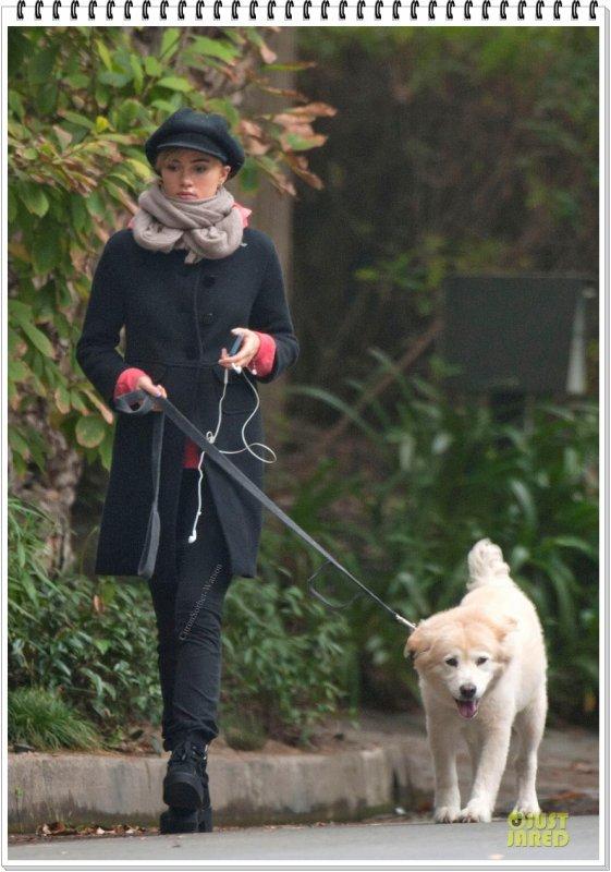 Le 28.10.13 : Suki promenait Charlotte le chien de Bradley dans les rues de Los Angeles...