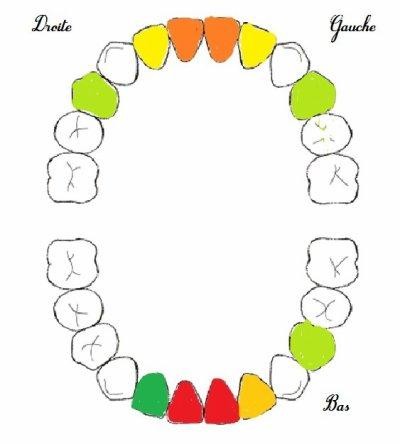 11 dents