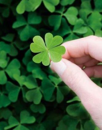 sorte(luck)