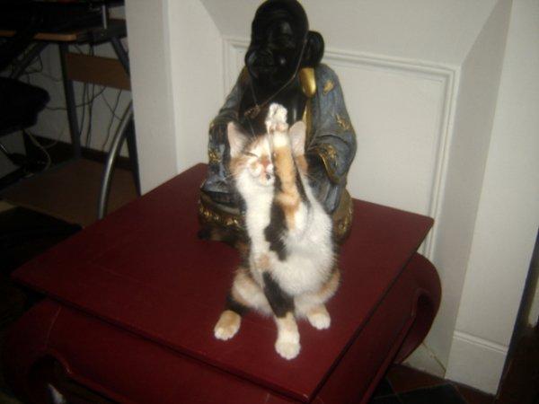 la zen attitude!