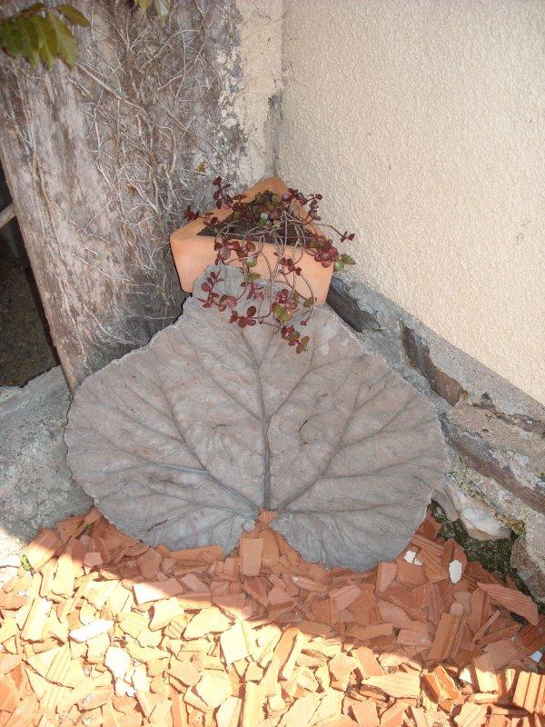 Mes feuilles béton !