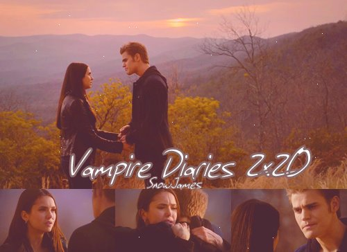 Vampire Diaries: Saison 2: épisode 20