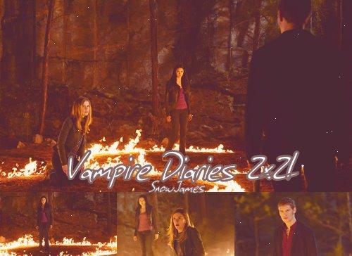 Vampire Diaries: Saison 2: épisode 21
