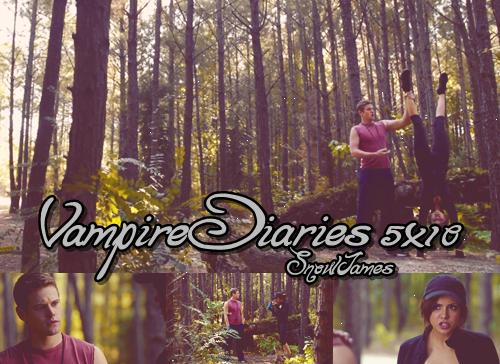 Vampire Diaries: Saison 5: épisode 10
