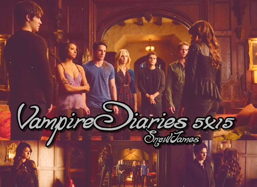 Vampire Diaries: Saison 5: épisode 15