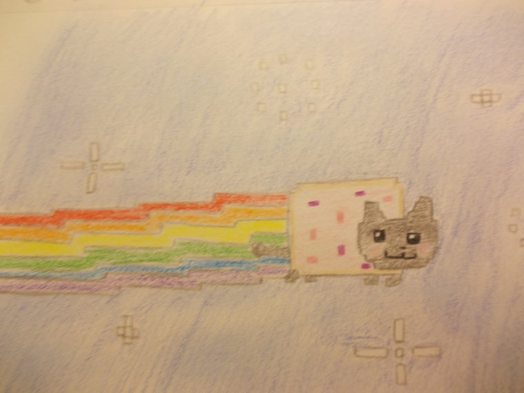 NYAN-CAT EN FORCE