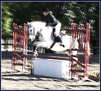 Concours, saison 2010