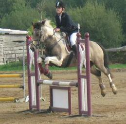 Poney 2D Ecuries du Launay