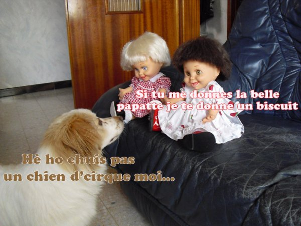 Bianca et mes poupées...