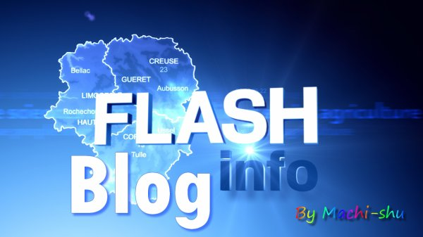 Flash Blog Info