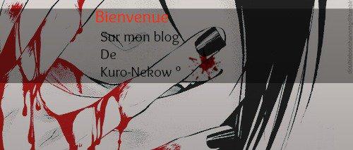 ° Bienvenue très chère , sur mon blog de Kuro-Nekow ° ~