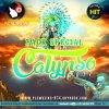 Pack Spécial Calypso (2017) - Exclusivité PLC Muziks 974 !