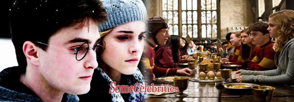 Harry potter and the deathly hallows - partie 1