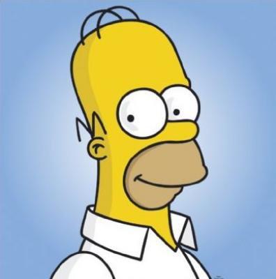 Homer Simpson Cheveux Et Oreilles Blog Des Fanatiques Des