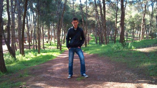 a day in khsibya