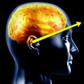 la dynamique mentale pour  exploiter au mieux  vos capacités