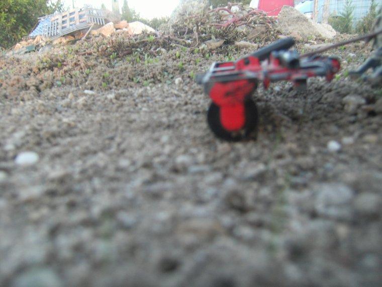 Passage du rouleau sur les semis