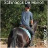 SchinoockDeMoiron