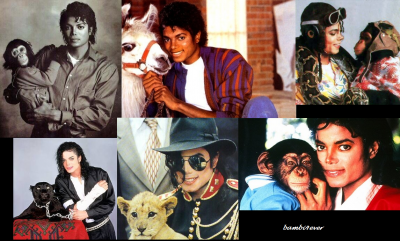 mj and animals