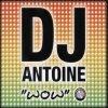 DJ-Ant