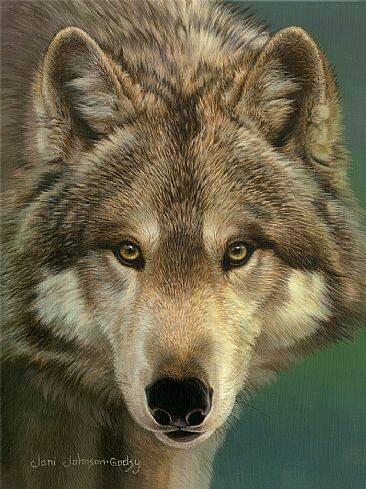 Encore des Massacres de Loup