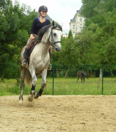""""""" Le meilleur cheval n'est pas celui qui t'as mené ou tu voulais alors que tu étais en selle, mais celui qui a fais voyager ton coeur alors que tu l'écoutait respiré """""""