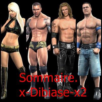 Sommaire =D