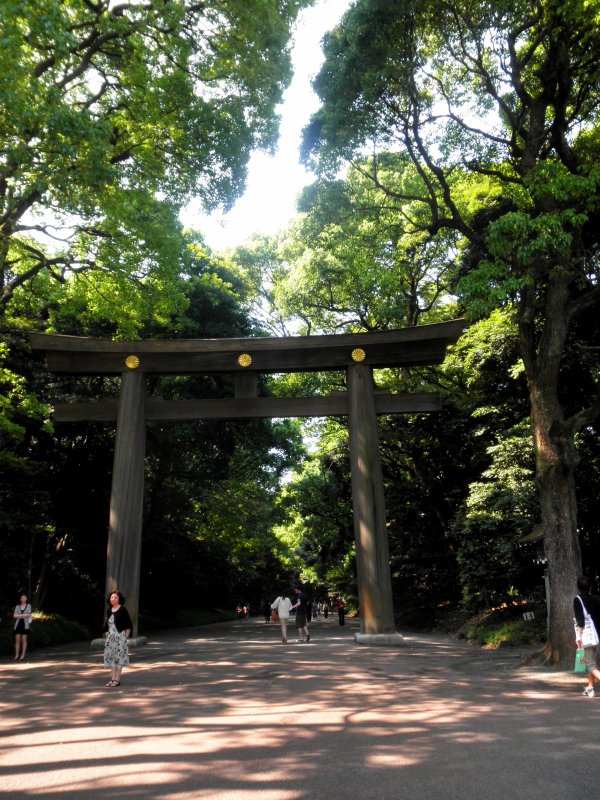 Sanctuaire Meiji jingu (et Harajuku un peu)