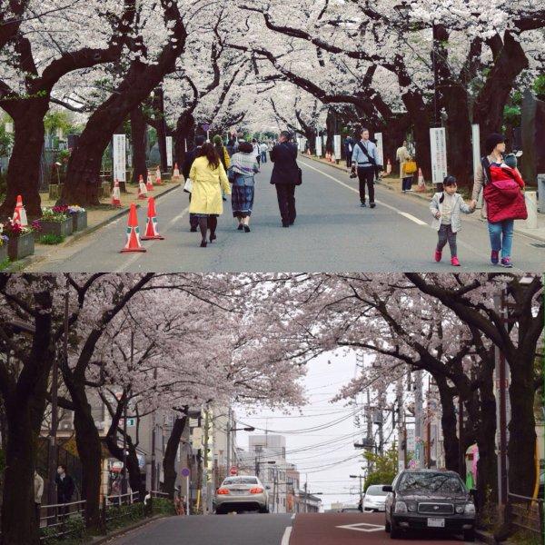 Vendredi 1 Avril et Samedi 2 Avril.