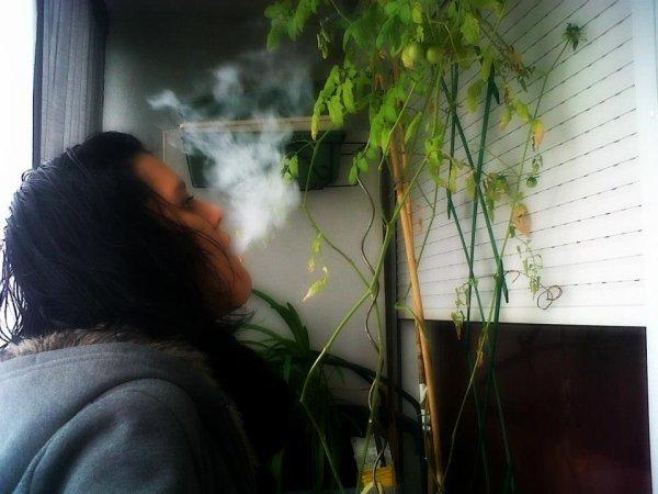 *- Mouuuuaah    ; Fume Taa Chiicha ;) «3