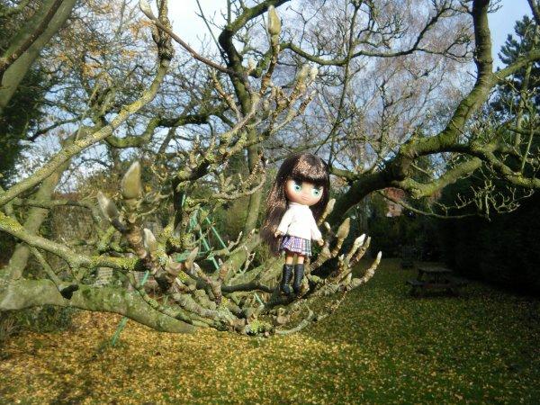Suite 3 de ~Andréa et Kimberley dans le jardin~