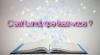 C'est Lundi, que lisez-vous ?