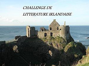 Les Challenges et Défis