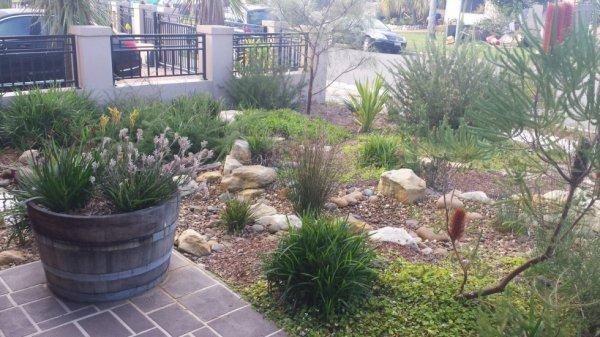 Garden Landscaper Services In Sydney | ECOlibrium Landscapes