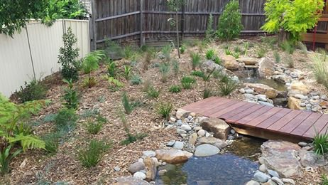 Rain Gardens Southern Highlands | Rain Gardens Design | ECOlibrium Landscapes