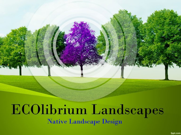 Landscape Design & Contractors In Australia