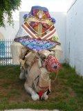 Photo de mamoizelle-pepette