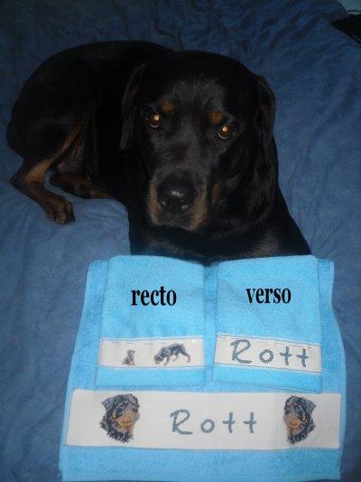 serviette Rott