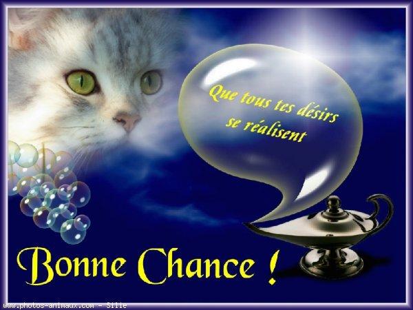 KDO POUR MES AMIES(IS)........GROS BISOUX...