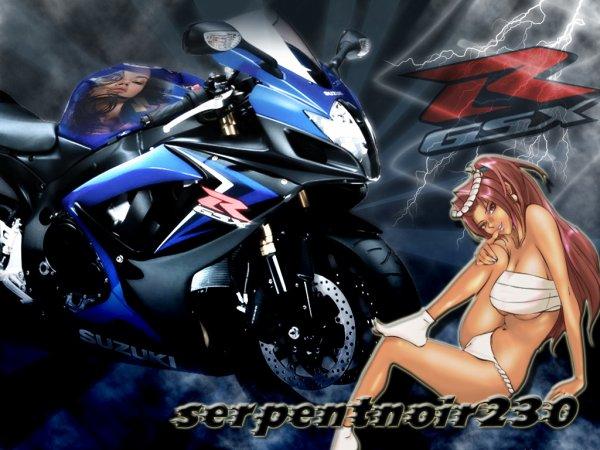 pour serpentnoir230