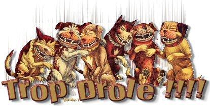 un  peu  d'humour  mdrrrrrrrrr    c'est    bien  les   femmes  ça !!!!!  la ptite souris