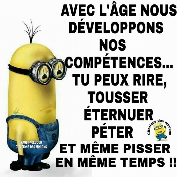 humour  citation  des  Minions