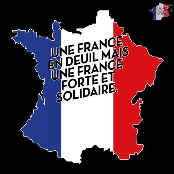 LA  FRANCE  EST  EN  DEUIL   POUR  TOUTE  LES  VICTIMES   DU  TERRORISME    SOLIDARITÉ