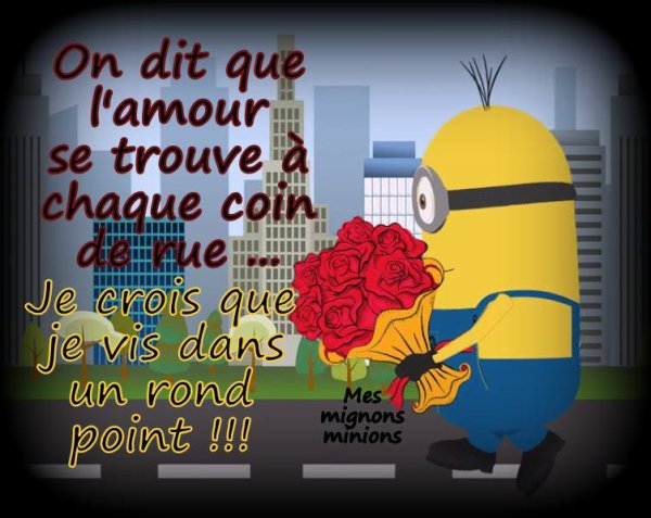 citation   des  minions