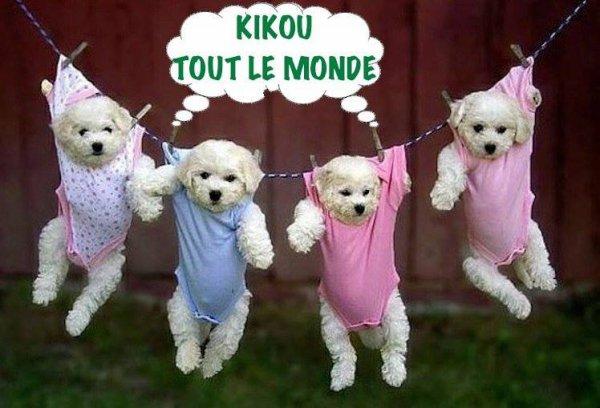 kikou  les  amies  amis