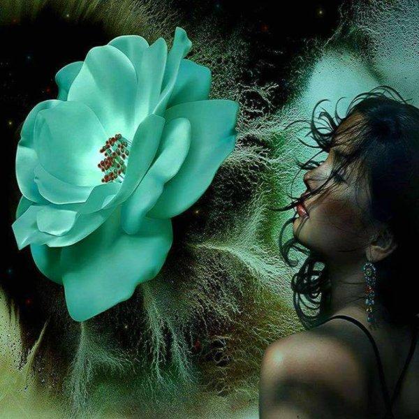 belles  images  peinture   prenez si vous aimez